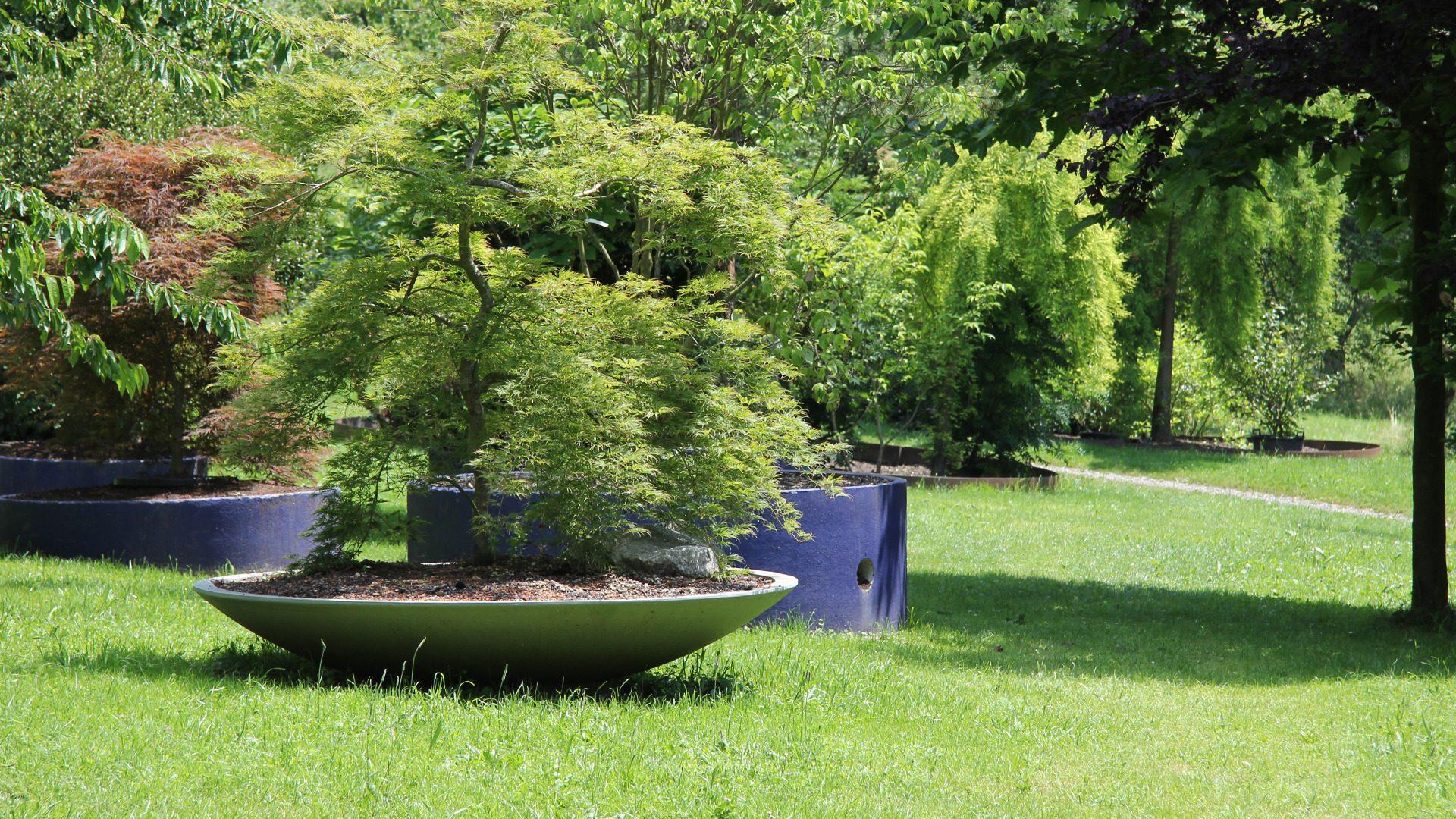 Montaż gazonów betonowych w ogrodzie